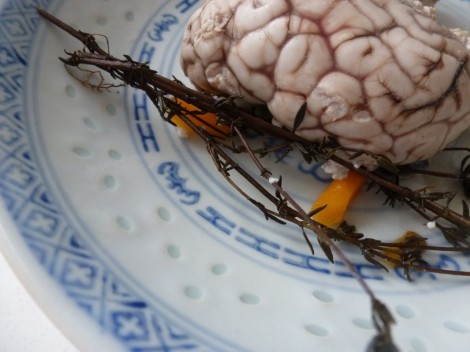 lamb's brain with a little more garnish. Yum!
